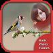 Birds Photo Frames by Bawbee Apps