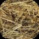 Needle in a Haystack by Cyberlander