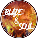 Guide for Blade and Soul