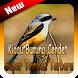 Kicau Burung Cendet Super Tembak Terbaru