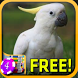 3D Cockatoo Slots - Free by Signal to Noise Apps
