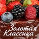 Золотая Классика (Пенза) by Kingo Soft