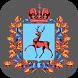 Министерство финансов Нижегородской области