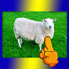 Sheep Count Xtreme by VCR Game