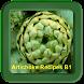 Artichoke Recipe B1 by RecipesChef