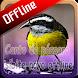Canto do pássaro sibite novo offline by takumidev