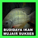 Panduan Budidaya Ikan Mujair Sukses by Rzafthoni Apps