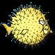 Adik Belajar Ikan Aneh by Hikori Studio