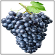Grapes Fruit Onet Connect Game by Android Fruits Onet Game