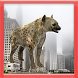 The Wild Hyena by Runner