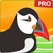Guide : New Puffin Web Browser Pro Tips 2017 by LOUYANG TBK