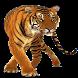 Tiger Widget/Stickers by Miracle (HD Widgets)