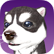 Buddy The Virtual Puppy by Starlight Interactive Studio
