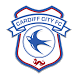 Cardiff City by InCrowd