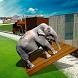 Zoo Animal Transporter Train by iPlay Studio