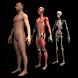 Drill Down Anatomy by WAGmob by WAGmob (Simple 'n Easy)