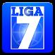 Liga 7 by Virtual Sports