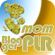 Mom Blogger PLR Products