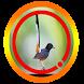 Suara Burung Murai Batu Special Mp3 by Omasuhu
