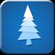 Low-poly winter Live Wallpaper by BAMBULKA Developer
