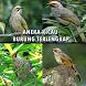 Aneka Kicau Burung Terlengkap by Hitam Manis Developer