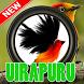 Cantos Da Uirapuru Aves