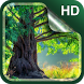 Forest Live Wallpaper HD by Dream World HD Live Wallpapers