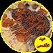 اعداد مائدة عيد الأضحى طبخ أكلات و شهيوات متنوعة by Pro expert