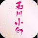 スキンケア商品、無添加石けんシャンプーの通販【玉川小町】 by solution07