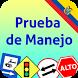 Prueba de Manejo - Carro by Webrich Software