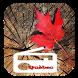 Quebec Radio City FM Online Download by graciela medina
