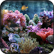 Aquarium wallpapers by HAnna