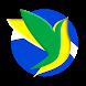 Pássaros Do Brasil by SixDayStudio