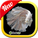 Betta Fish 3D by MenikApp