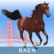 BAEN by Justek, LLC