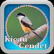 Kicau Cendet Gacor by Espas Media