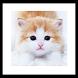 cat yeaning wallpapaer by 권민규