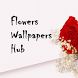 Flower Wallpapers Hub by m:lab East Africa Students Account