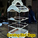 Carving Bird Cage by amardroid
