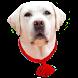 Обереги для собак by Dog lover