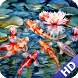 Koi Fish Wallpaper by LwpApps