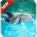 Dolphin 3D Live Wallpaper by kimvan