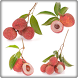 New Lychee Fruit Onet Game by Android Fruits Onet Game