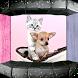 Dog & Cats Ringtones by Bravo Ringtones