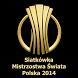 Siatkówka MŚ Polska 2014 by Michal Drabik