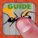 Guide for Ant Smasher by Борис Федосов