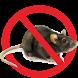 Suara Pengusir Tikus
