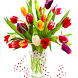 Colorful Tulips Live Wallpaper by Revenge Solution
