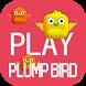 Plump Bird by trungnguyen