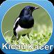 Master Kicau Kacer by Espas Media